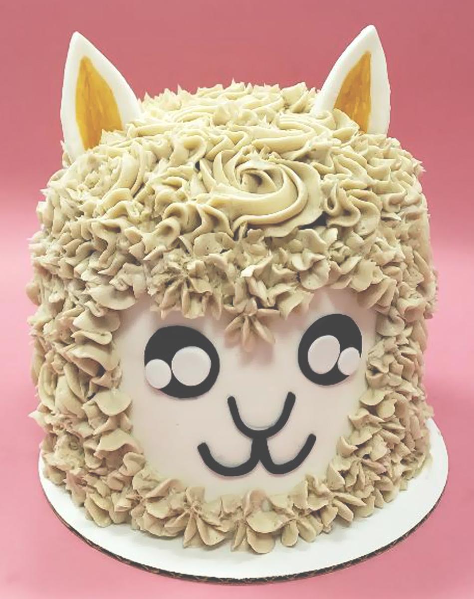 Llama Cake 2